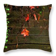 Retaining Wall In Autumn Throw Pillow