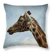 Reticulated Giraffe Head Throw Pillow