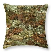 Reticulated Reflection Throw Pillow