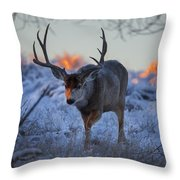 Retreat From The Sunrise Throw Pillow