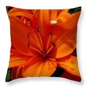Retreating Orange Lilies Throw Pillow
