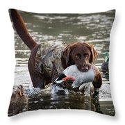 Retrieving Chocolate Labrador Throw Pillow