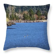 Return To The Bay Throw Pillow