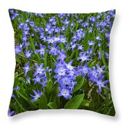 Return To The Meadow Throw Pillow