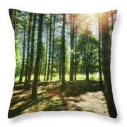 Retzer Nature Center Pine Trees Throw Pillow