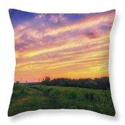 Retzer Nature Center - Summer Sunset #4  Throw Pillow