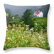 Revisiting A House Throw Pillow