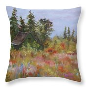 Revolutionary Barn  Throw Pillow