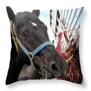 Reward For A Job Well Done Throw Pillow