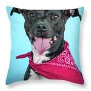 Rex 3 Throw Pillow