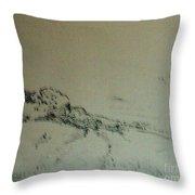 Rfb0215-2 Throw Pillow