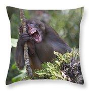 Rhesus Laughing Throw Pillow