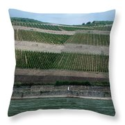 Rhine Valley Vineyards Panorama Throw Pillow
