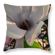Rhineland-palatinate Japanese Magnolia Branch Throw Pillow