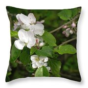 Rhineland-palatinate Pear Blossoms Throw Pillow