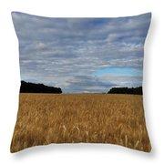 Rhineland-palatinate Throw Pillow