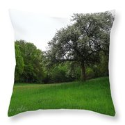 Rhineland-palatinate Summer Meadow Throw Pillow