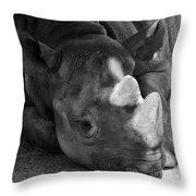 Rhino Nap Throw Pillow