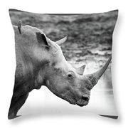Rhino With Passengers Throw Pillow