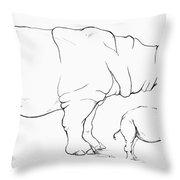 Rhinoceros Comparison Throw Pillow