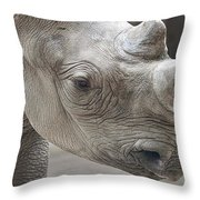 Rhinoceros Throw Pillow by Tom Mc Nemar