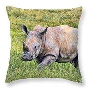 Rhinosceros Throw Pillow