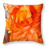 Rhodies Art Prints Orange Rhododendron Flowers Baslee Troutman Throw Pillow