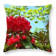 Rhodies Art Prints Red Rhododendron Floral Garden Landscape Baslee Throw Pillow