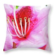 Rhodies Flower Macro Pink Rhododendron Baslee Troutman Throw Pillow