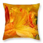 Rhodies Orange Yellow Rhododendrons Art Prints Canvas Baslee Troutman Throw Pillow