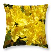 Rhodies Yellow Rhododendrons Art Prints Baslee Troutman Throw Pillow