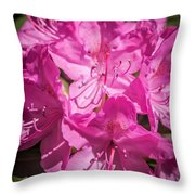 Rhododendron-close Up1 Throw Pillow