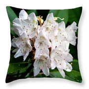 Rhododendron Family Of Flowers Throw Pillow