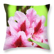 Rhododendron Floral Art Prints Rhodies Flowers Canvas Baslee Troutman Throw Pillow
