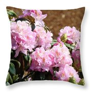 Rhododendron Flower Garden Art Prints Canvas Pink Rhodies Baslee Troutman Throw Pillow
