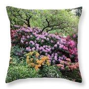 Rhododendron Hill Throw Pillow