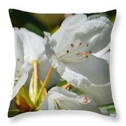 Rhododendron I Throw Pillow