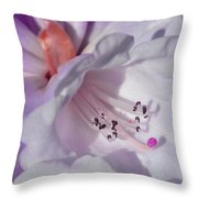 Rhododendron In White And Magenta Throw Pillow
