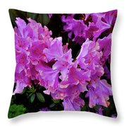Rhododendron Pink Throw Pillow
