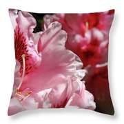 Rhododendrons Art Prints Floral Pink Rhodies Canvas Baslee Troutman Throw Pillow