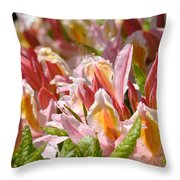 Rhododendrons Floral Art Prints Canvas Pink Orange Rhodies Baslee Troutman Throw Pillow