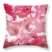 Rhododendrons Flowers Art Print Pink Rhodies Baslee Troutman Throw Pillow
