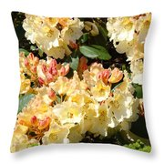 Rhododendrons Garden Art Prints Creamy Yellow Orange Rhodies Baslee Throw Pillow