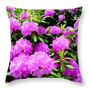 Rhododendrons In Bloom Throw Pillow