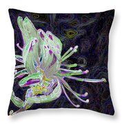 Rhodora-ism Throw Pillow