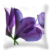 Rhody Ballet-purple Throw Pillow