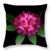 Rhody Queen - Red Throw Pillow