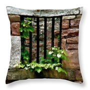 Rhus Radicans Triumphant Throw Pillow