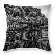 Rial Chew Ranch 3 Throw Pillow