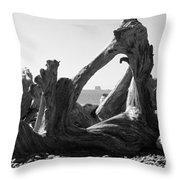 Rialto Beach Cake Rock Driftwood Throw Pillow